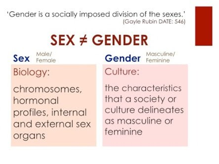 Meaning of sex and gender
